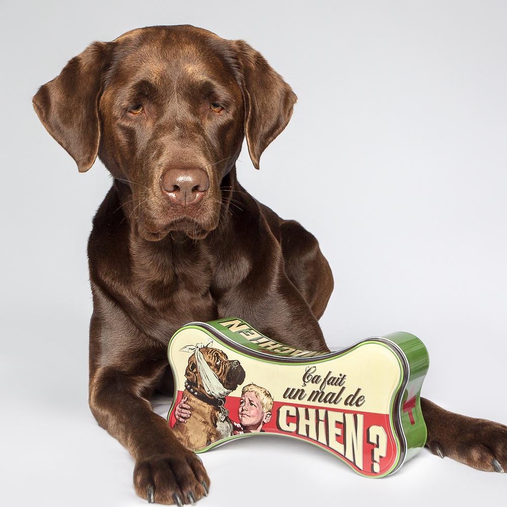 Retro-Dose: perfekt zum Verstauen von leckeren Hundekeksen