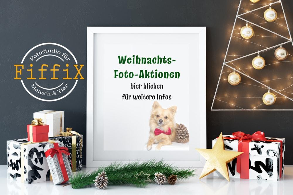 Mit diesen Weihnachtsgeschenken kannst du punkten!