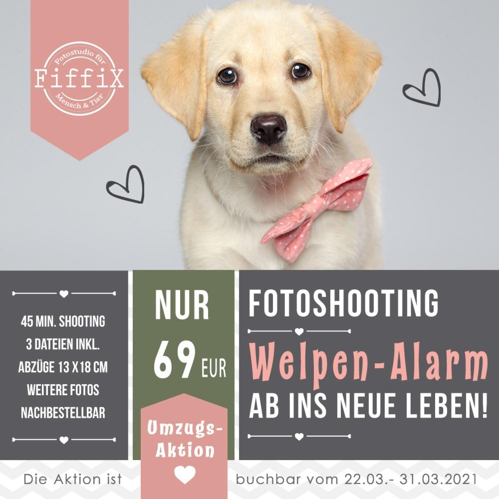 Verlängert! – Fotoshooting-Aktion Nr.1